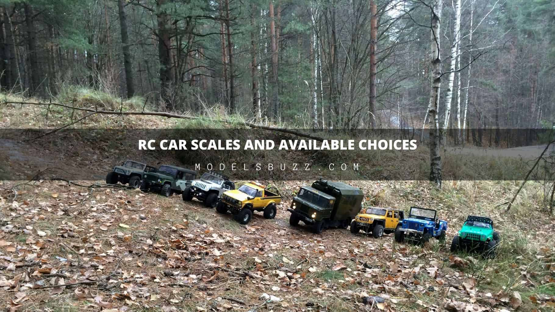 RC Car Scales and Available Choices
